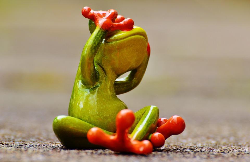 frog-1274766_960_720