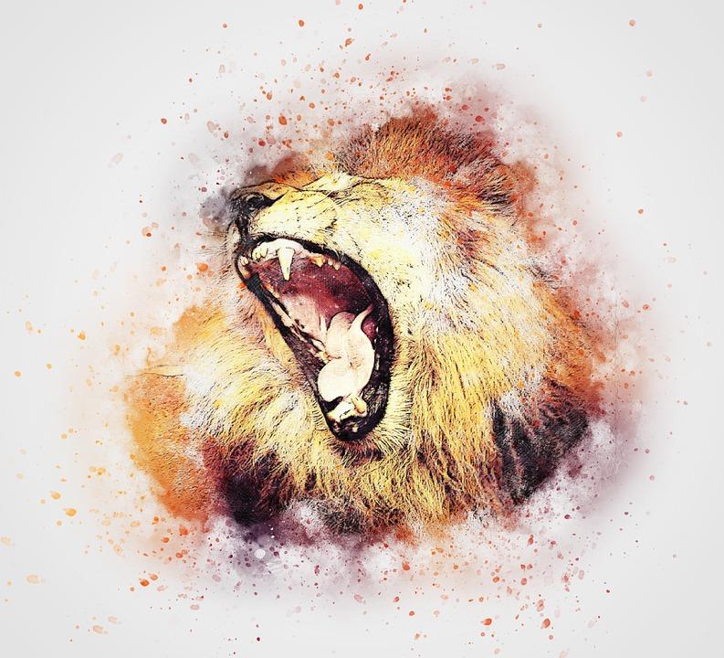 lion-2298725_960_720