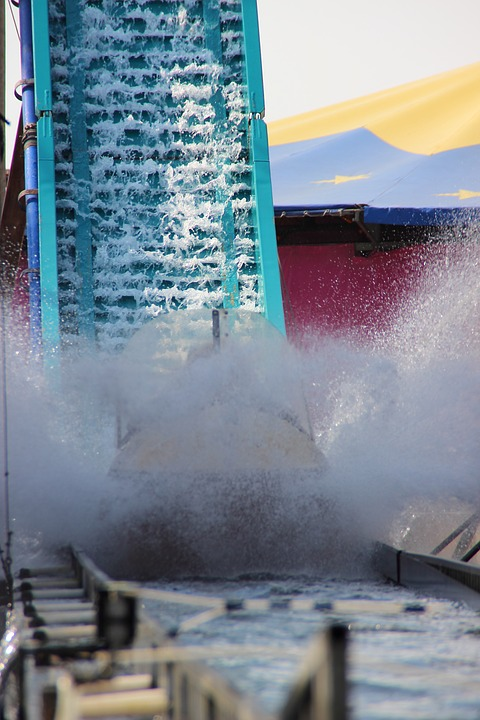 water-rail-338589_960_720