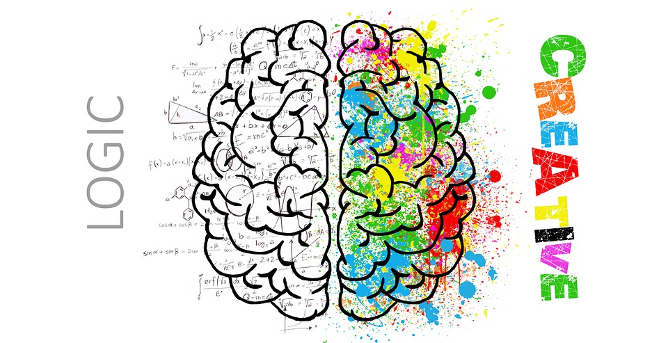 brain-2062055_960_720