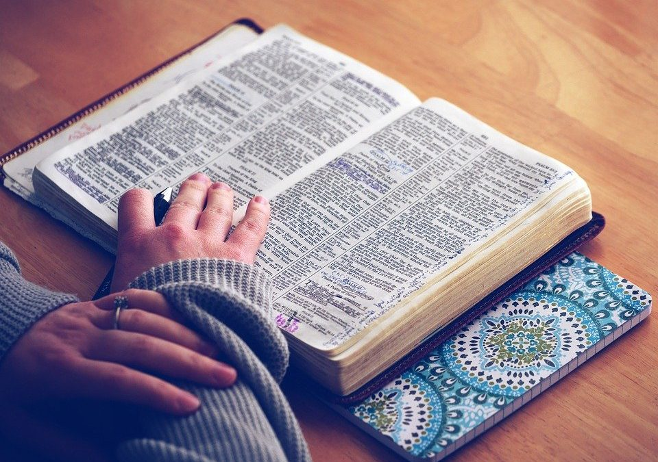 My 100-Day Plan, Day 52: Really Read Your Bible